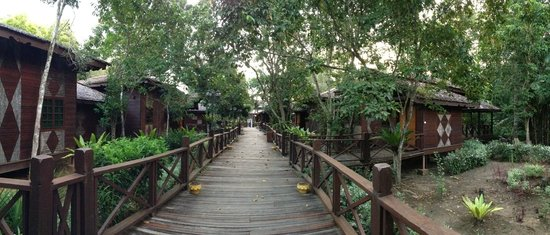 Sipadan Mangrove Resort : Room on land (Mangrove forest feel)