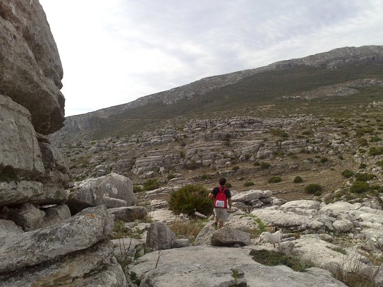 El Refugio de Alamut: de senderismos por el tocalito con Gabriel de refugio de alamut