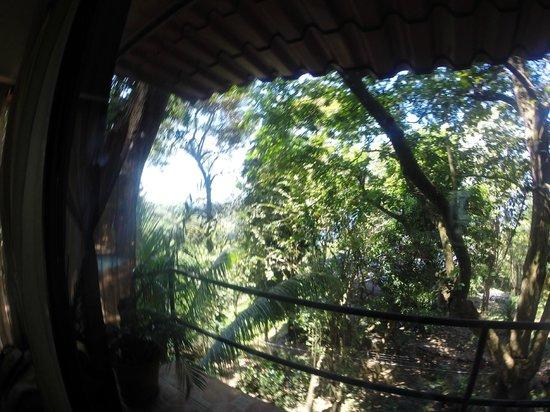Mango Moon Villa: Howler Hangout view