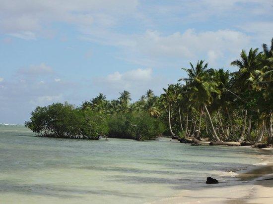 Grand Bahia Principe El Portillo: Strandspaziergang