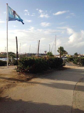 Plaza Resort Bonaire: Luchthaven op de achtergrond