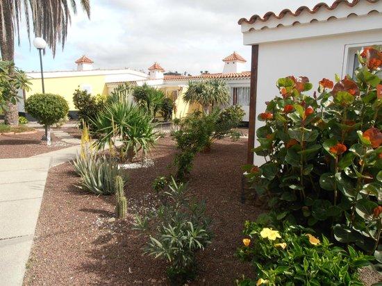 Villas Blancas: Garden