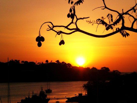 Poinsettia Villa Apartments: Sunset froim the terrace