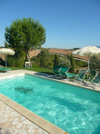 La piscina fotograf a de palazzo conti a san quirico d - Piscina g conti verona ...