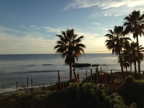 Laguna Cliffs Marriott Resort & Spa: Laguna Beach is close by