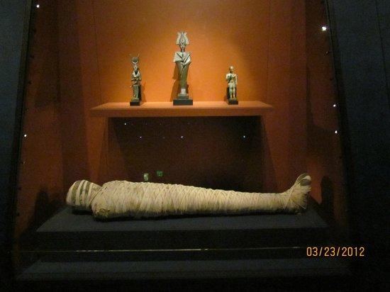 Nelson-Atkins Museum of Art: Egyptian artifacts
