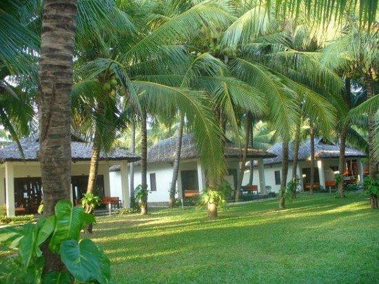 Blue Ocean Resort: территория