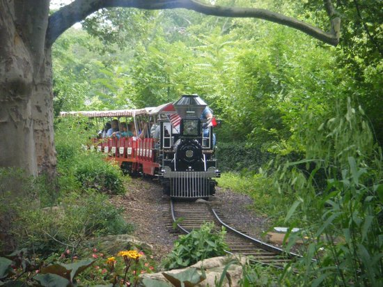 St. Louis Zoo: train ride available