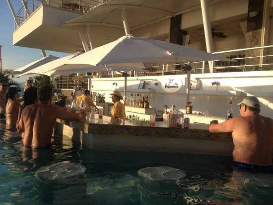 Secrets Vallarta Bay Resort & Spa: Manatee's Pool Bar