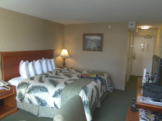 Ramada Plaza Waikiki: 2nd room with one king