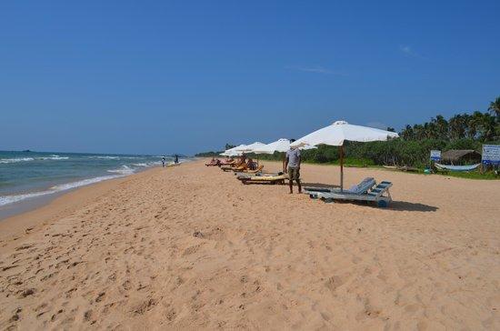 Panchi Villa : Beach area, Wunderbar