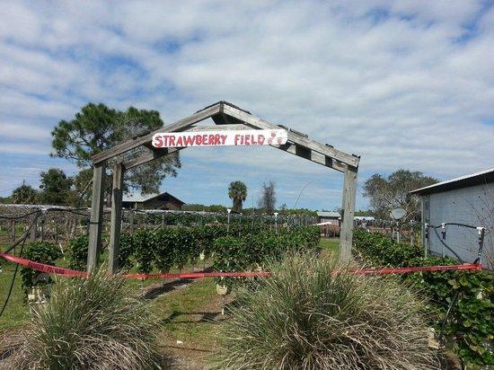 Visiter Lake Placid Tourisme 224 Lake Placid Floride