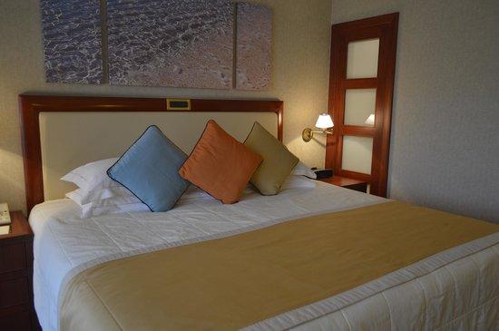 Four Seasons Hotel : room
