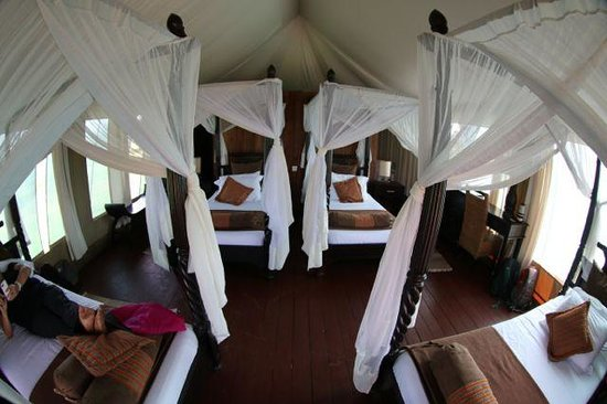Masek Tented Camp: 4 beds inside our tent for us and the kids