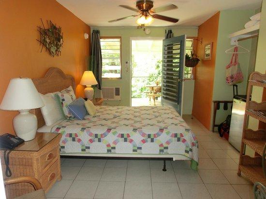 Ceiba Country Inn : Room facing jungle