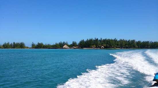 Thatch Caye Resort: Thatch Caye from offshore