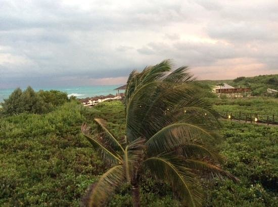 Melia Buenavista: view from our room., walkway to beach