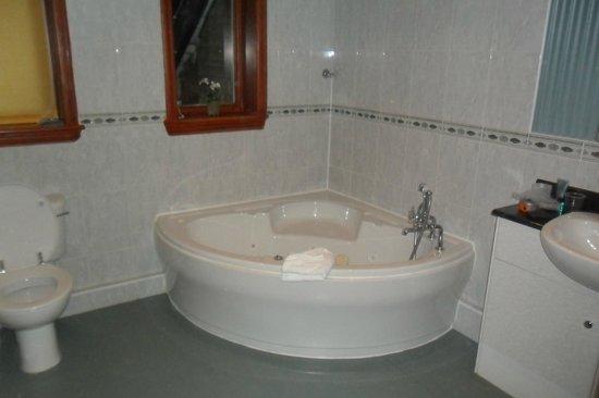 Whitehall Hotel: Bathroom