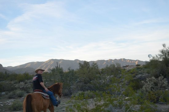 White Tanks Riding Stables: Our guide