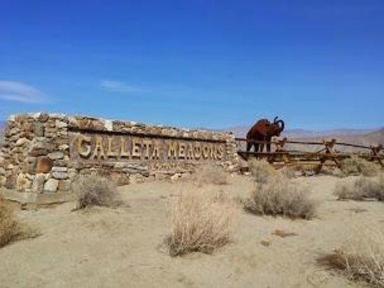 Galleta Meadows : galleta