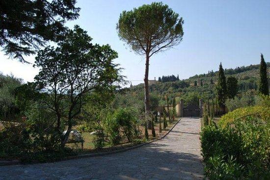 B&b Ulivi di Castello : ingresso giardino