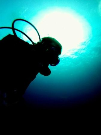 Dressel Divers : Diving in Cozumel