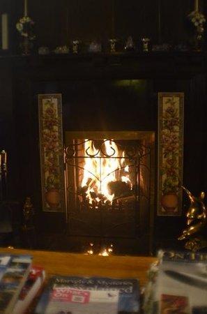 Rowan Tree Country Hotel: roaring fire - great books