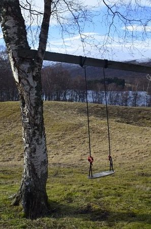 Rowan Tree Country Hotel: swing! i didn't try it though :-D