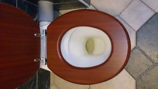 Springfield Country Hotel: At first we thought someone had left us a unflushed toilet