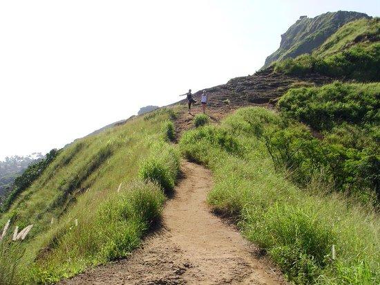 Lanikai Pillboxes: Trail is good.