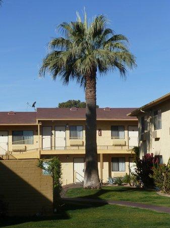 La Quinta Inn Phoenix - Arcadia: courtyard