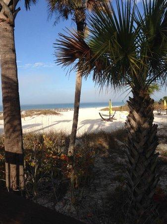 Hyatt Residence Club Sarasota, Siesta Key Beach : BEACH