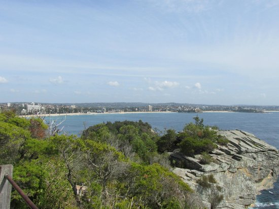 Sydney Coast Walks - Day Walks : Manly Beach