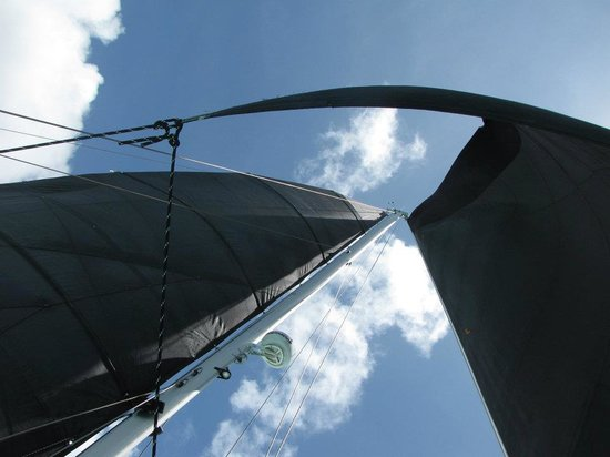 Kekoa Sailing Expeditions : Wind in the sails