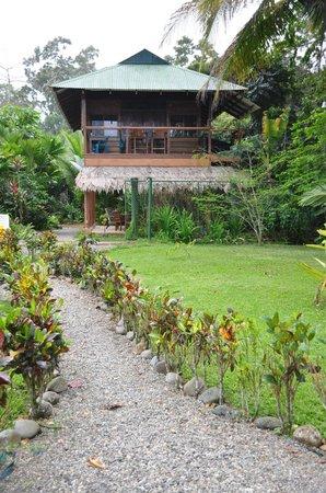 Villas Serenidad: View from path to beach