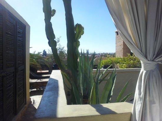 Riad Kheirredine : roof terrace