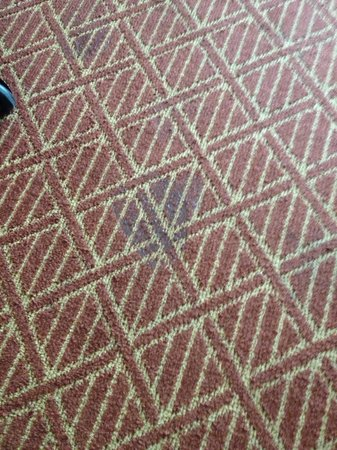 The Lodge at Sonoma Renaissance Resort & Spa: Stains on carpet