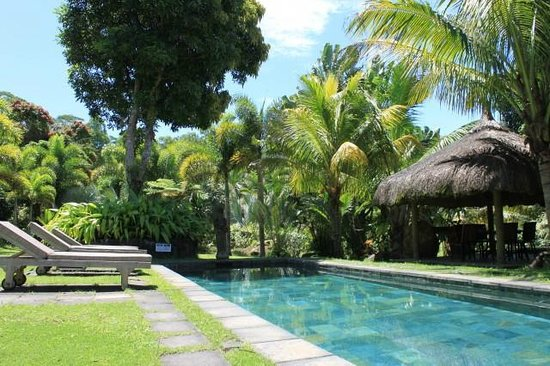 Lakaz Chamarel Exclusive Lodge : Vue piscine Sup