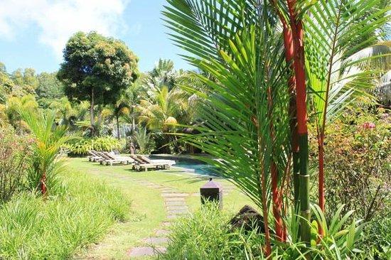 Lakaz Chamarel Exclusive Lodge: Vue piscine devant Kaz Sup