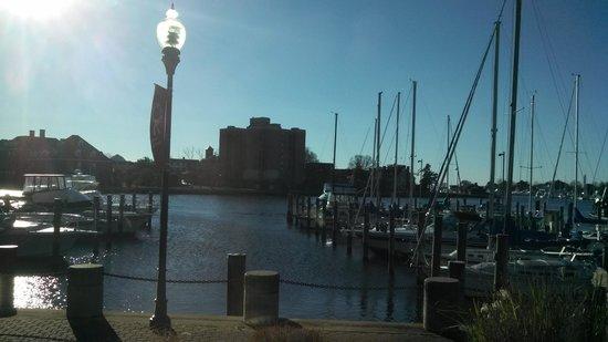 Crowne Plaza Hampton Marina: Hampton marina