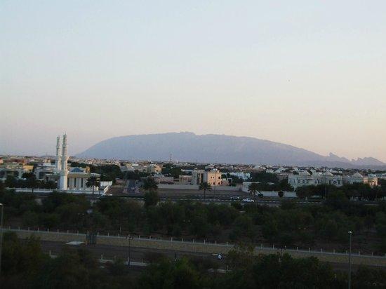 Danat Al Ain Resort: Widok z pokoju na I p. na góry