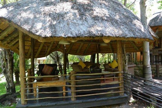 Toro Yaka Bush Lodge: .