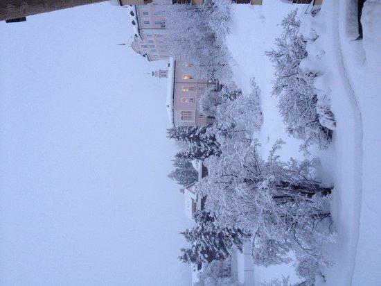 Alpenhotel Quadratscha: Vue de la chambre