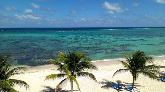 Wyndham Reef Resort: The best view