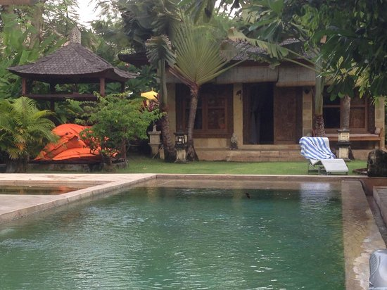 Villa Dermawan : The garden and the pool