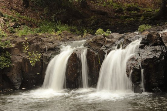 Oahu Photography Tours : Liliuokalani Botanical Garden