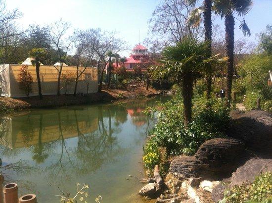 Disneyland Park: A lovely lake near Frontier Land