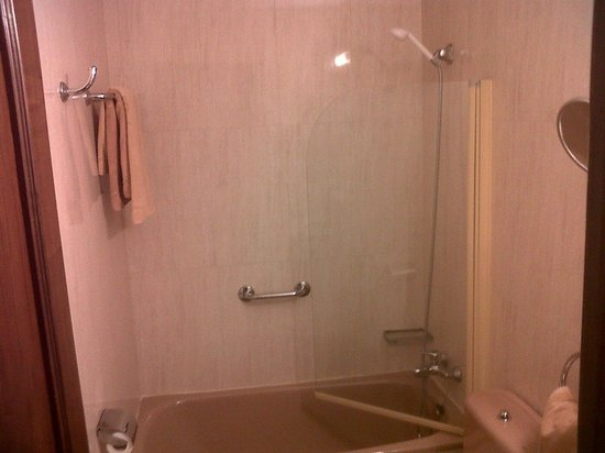 Best Western Hotel Los Condes : bathroom