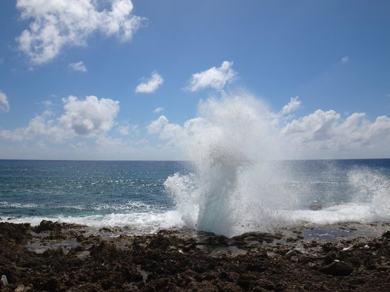 Blow Holes: Beautiful day!