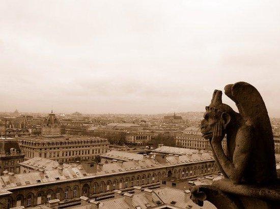 Cathédrale Notre-Dame de Paris : View over Paris from Notre Dame